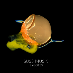 Cover of Zygotes