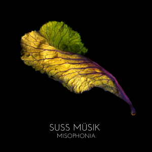 Misophonia album cover